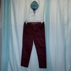 American Eagle Outfitters Hi-Rise Jegging Size 10